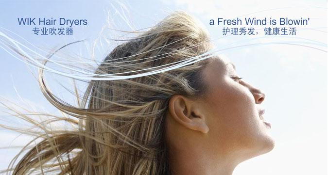 德国伟嘉(WIK )5422fd全球通用双电压旅行折叠式电吹风【厂家 品牌 售后 图片 参数 规格 尺寸 重量 颜色 价格 批发 特价】